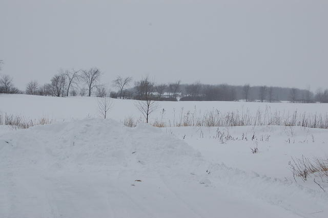 Looking to the west toward Green Bay.We sure had a snowy,cold winter in 2007/2008.Must be global warming!!